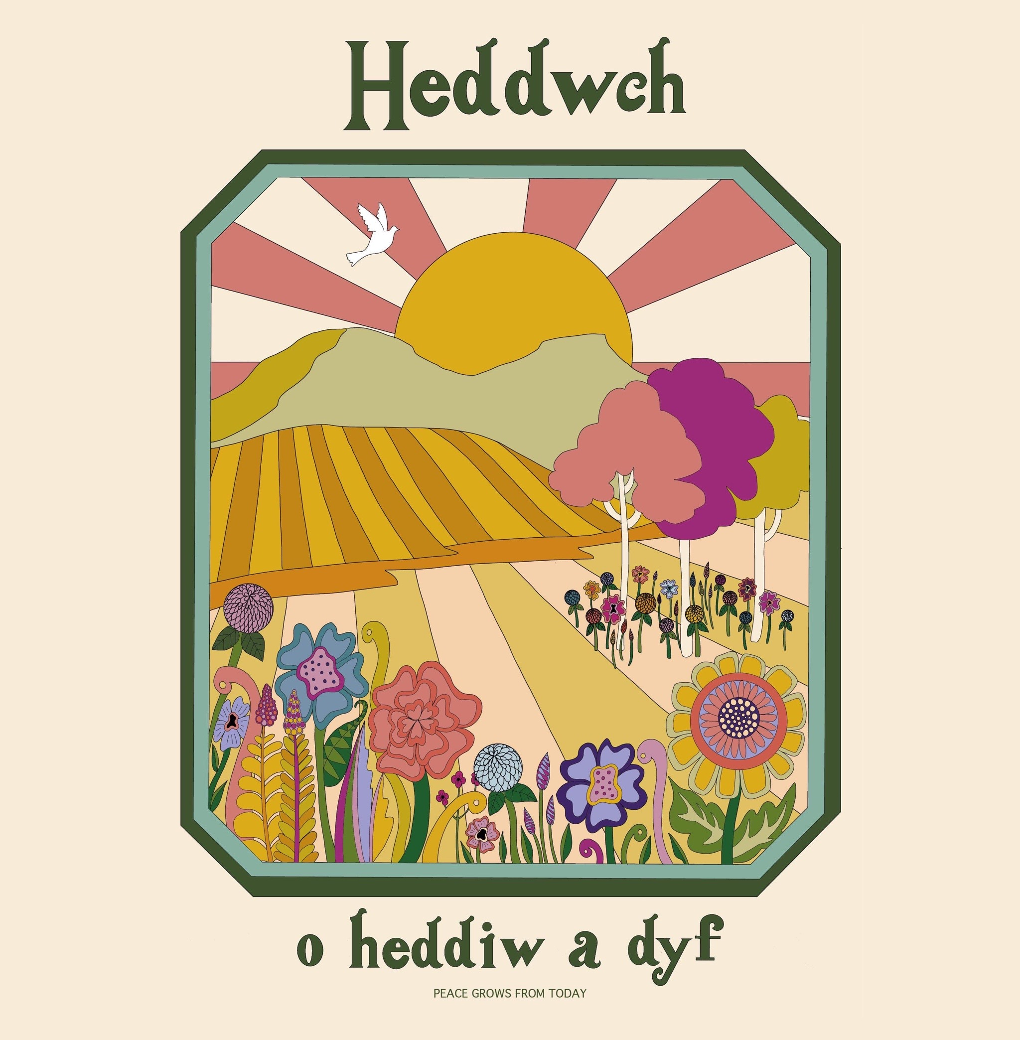 Heddwch o heddiw a dyf